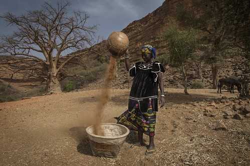 Daily Life in Dogon Region, Mali | by United Nations Photo