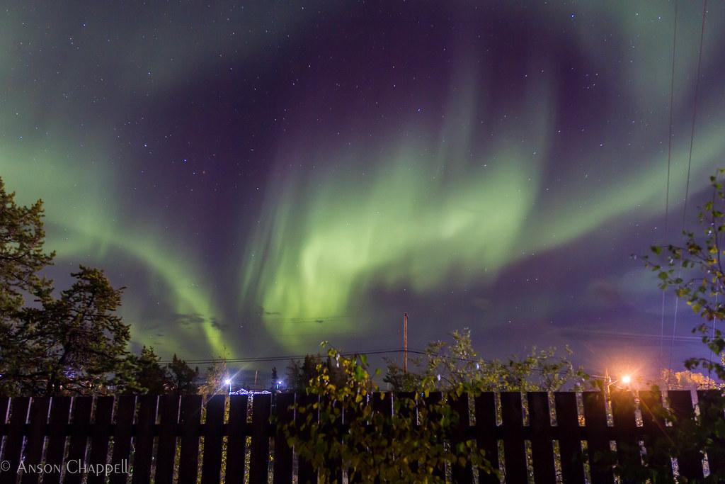 Backyard aurora