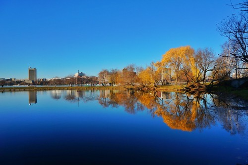 trees water boston reflections river massachusetts newengland backbay pw