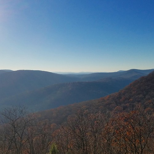 Kind Jim's Vista, Loyalsock State Forest