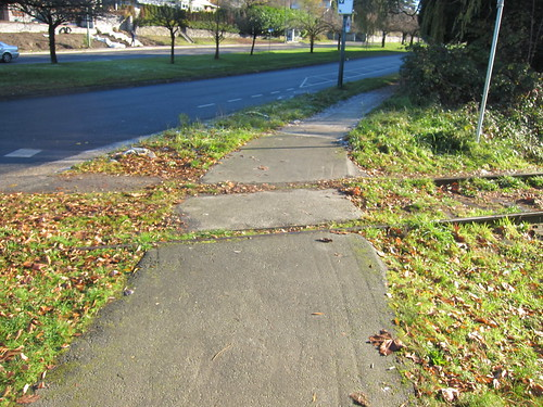 The Arbutus Corridor | by Stephen Rees