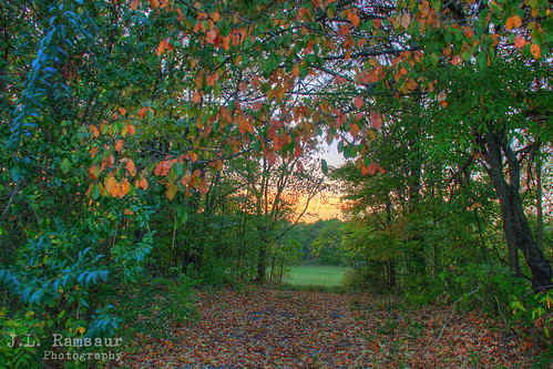 jlrphotography nikond7200 nikon d7200 photography photo cookevilletn middletennessee putnamcounty tennessee 2016 engineerswithcameras cumberlandplateau photographyforgod thesouth southernphotography screamofthephotographer ibeauty jlramsaurphotography photograph pic cookevegas cookeville tennesseephotographer cookevilletennessee fallowyourpath tennesseehdr hdr worldhdr hdraddicted bracketed photomatix hdrphotomatix hdrvillage hdrworlds hdrimaging hdrrighthererightnow sunrise sunset sun sunrays sunlight daytime sunglow orange yellow landscape southernlandscape nature outdoors god'sartwork nature'spaintbrush rural ruralamerica ruraltennessee ruralview fall fallcolors fallleaves fallseason fallinthesouth colorful colors autumn autumncolors autumninthesouth autumnleaves falltrees autumntrees