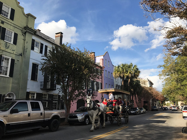Horse Carriage at Rainbow Row