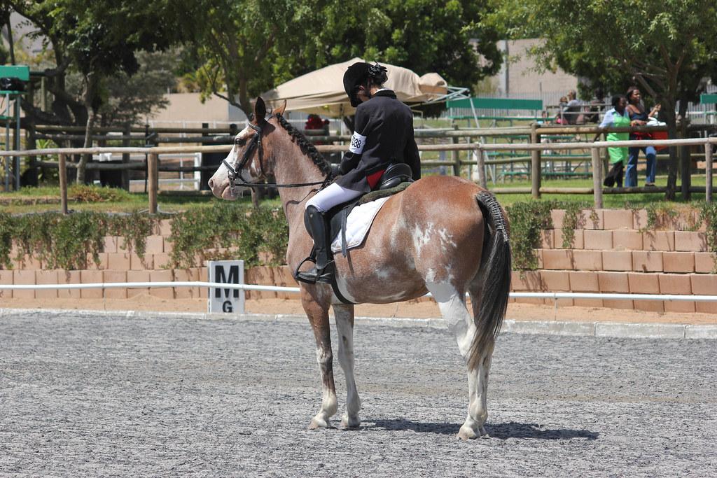 Equestrian Club - Fairmont High School, Durbanville South Africa