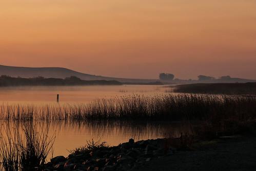 northerncalifornia wetlands awake solanocounty suisunmarsh