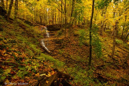ontario yellow trees canada october forest color colour fall long autmn waterfall falls valley cascade exposure area conservation canterbury ancaster dundas