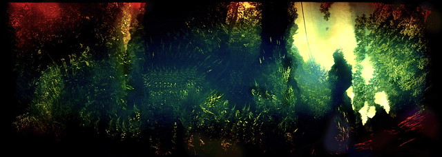 La Foret Fantastique - Gently, Into That Good Night