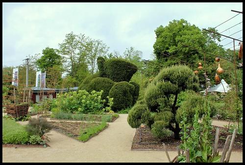 Niwaki, la taille en nuage, l'art topiaire, dans le jardin de Michel 22511419332_c7d2838bbc
