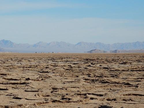Woestijn onderweg naar Amboy - 2