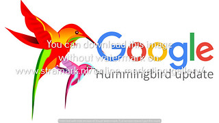 Google Hummingbird update clean birds logo left | by Zoekmachine Marketing Bureau