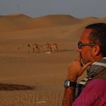 Viajefilos en el desierto de Abu Dhabi 04