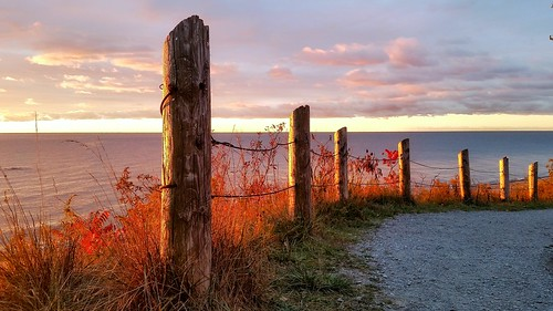 sunrise glow fenceposts symmetry dawn suburban