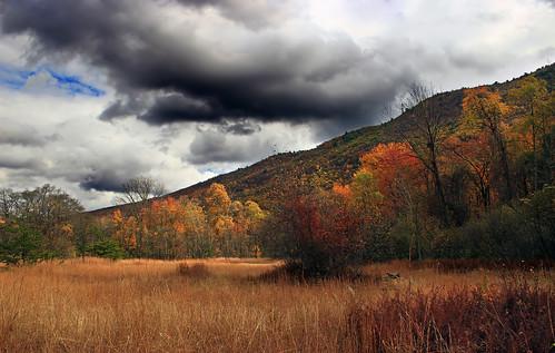 autumn trees sky nature field grass clouds landscape hiking pennsylvania meadow foliage creativecommons bluemountain appalachianmountains stratocumulus kittatinnymountain carboncounty lehighgap lehighgapnaturecenter