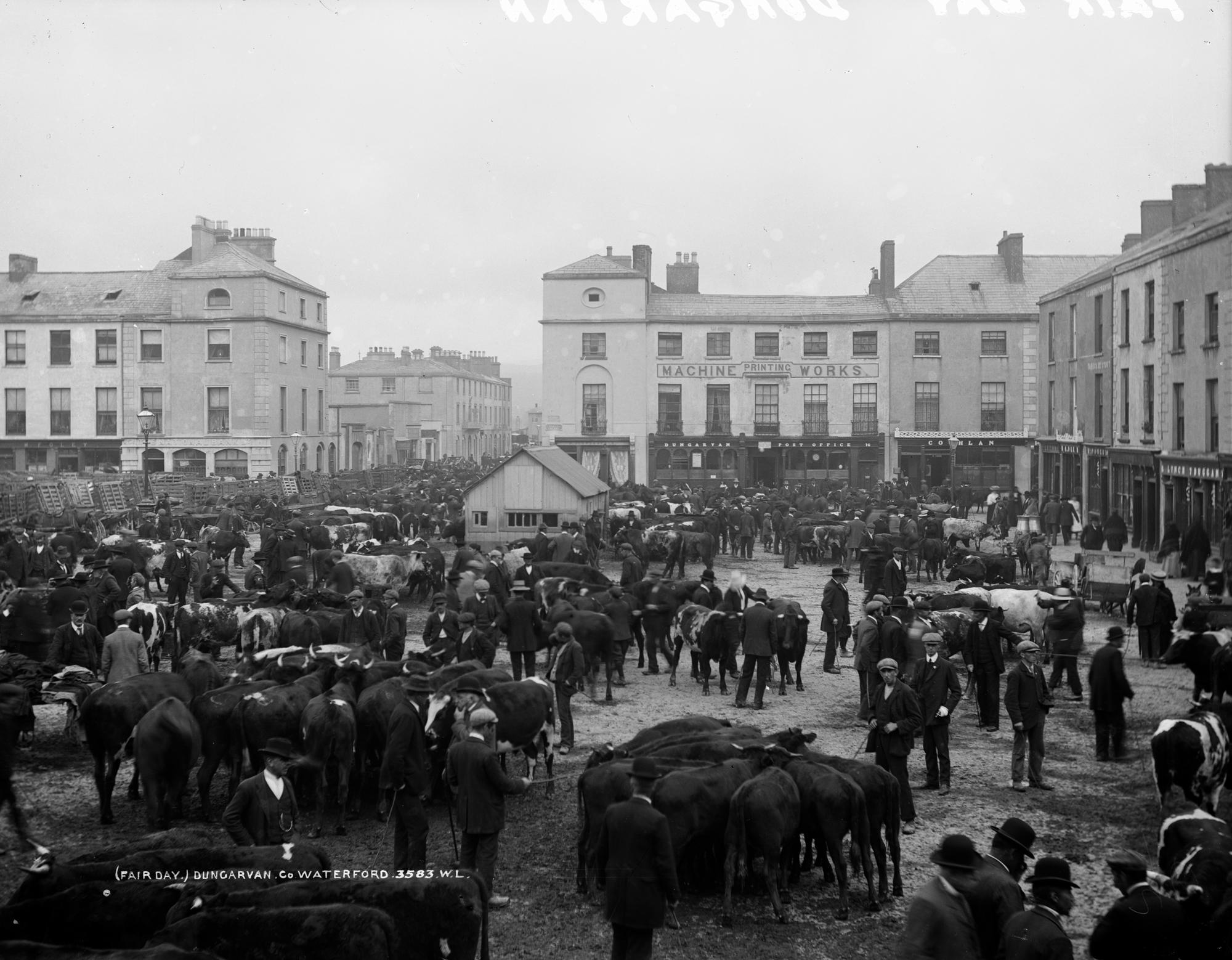 Fair Day, Dungarvan, Co. Waterford