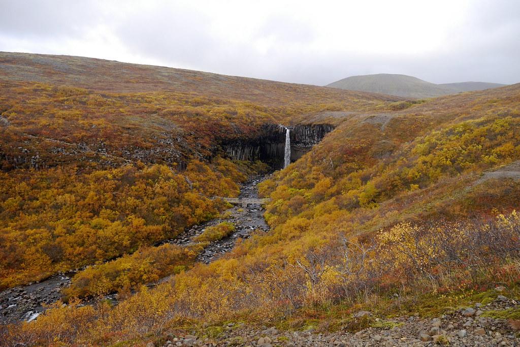 Svartifoss in Skaftafell National Park