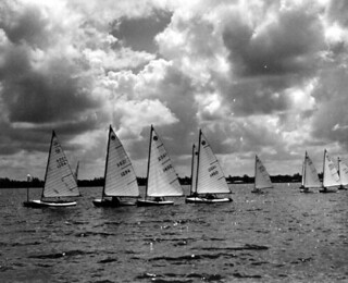Moth class sailboats in labor Day boat races -Sarasota