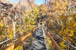 Holden Arboretum Canopy Walk   by EDrost88