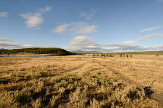 Yellowstone NP | by Tucpasquic