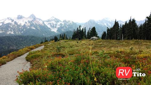 Sat, 08/15/2015 - 16:08 - Mount Rainier National Park