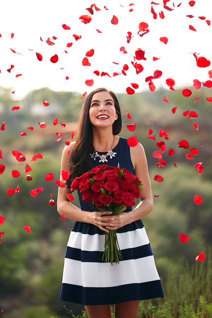 woman in blue and white stripe dress holding red rose flower bouquet with raining rose petals