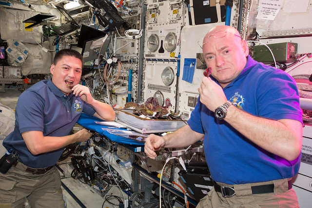 Halftime in Space: Space Station Crew and Ground Controllers Mark Mid-point of One Year Mission