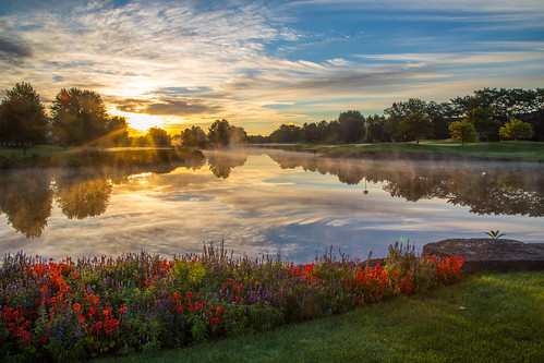 morning flowers sky reflection water birds clouds sunrise golfcourse canonef24105mmf4lisusm canoneos6d autumn2015 arboretumclub
