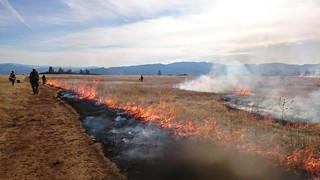 Prescribed burn: Lower Table Rocks, Medford | by BLM Oregon & Washington