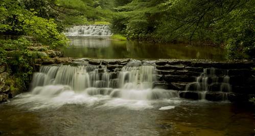 travel nature water beautiful beauty creek photography waterfall nikon pennsylvania gorgeous waterfalls nikkor photooftheday hickoryrunstatepark hickoryrun nikonphotography nikkorafs1855 nikond7200 saltydogphoto