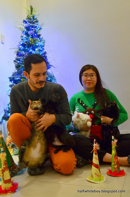 PETS | BTS: Our New Year's