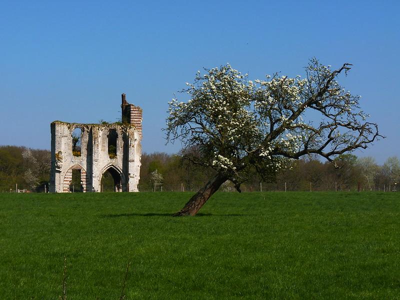 Abbaye de Clairmarais
