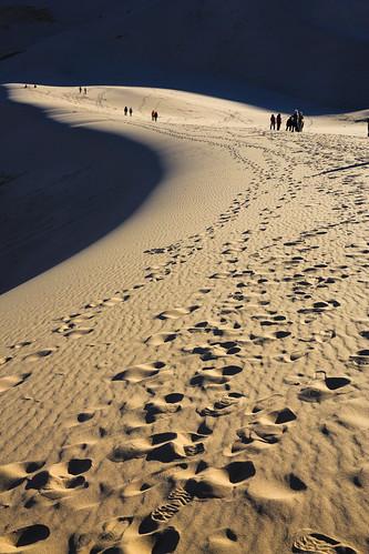 sand desert mongolia footprint gobi khongoriinels singingsanddunes duutmanhan