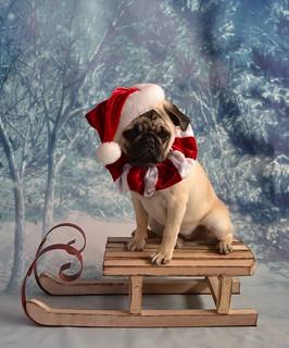 Santa Boo Lefou | by DaPuglet