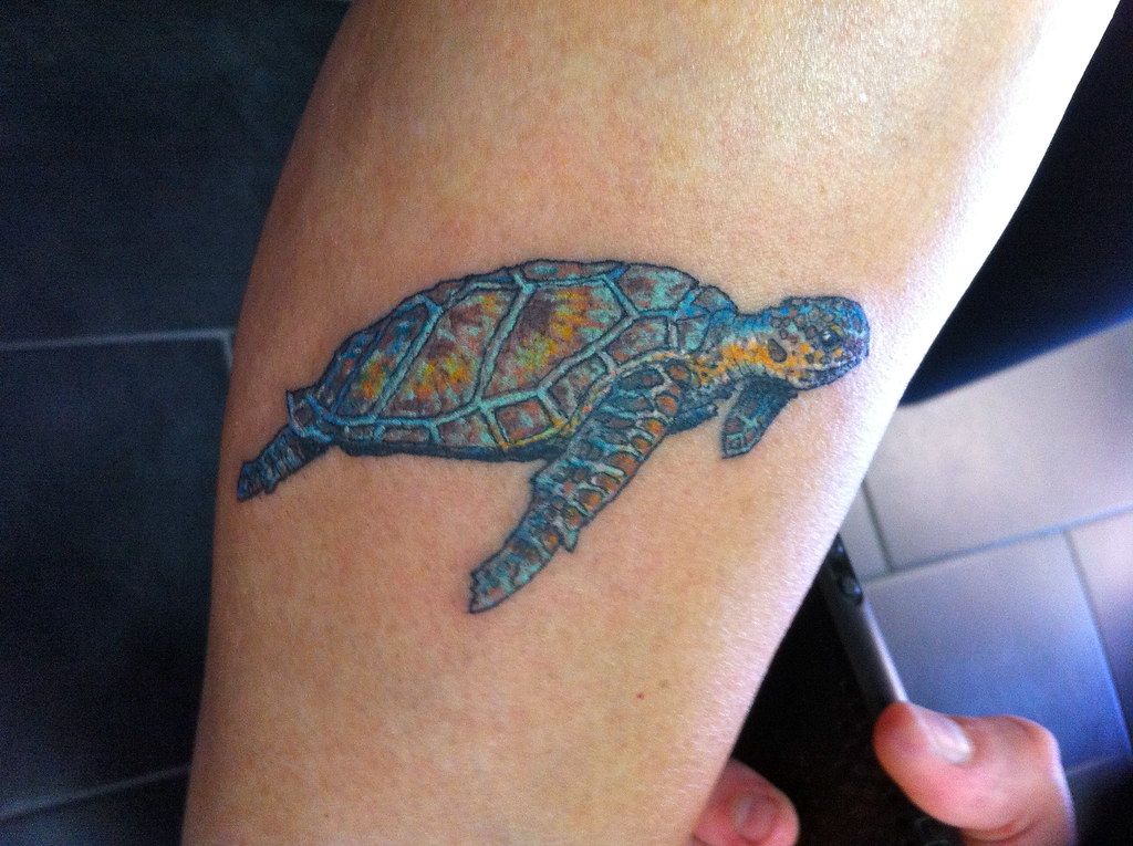 5e182216bd3cd small sea turtle tattoo | small sea turtle tattoo | Flickr