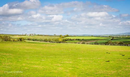 landscape unitedkingdom devon coutryside watermarked landscapephotography outdoorphotography broadwoodwidger