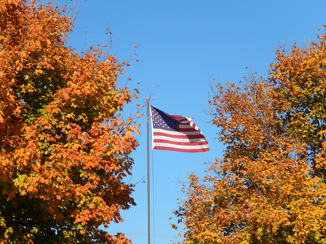 Lansing - vlag met herfstkleuren