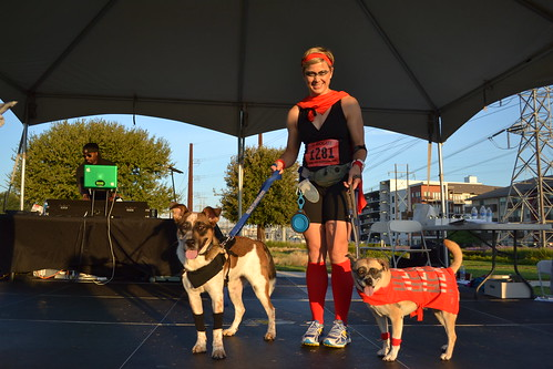 Costume Contest Winner - Super Dogs: Heroes in Training - Pacer, Panko & Owner Pam | by CASA of Travis County