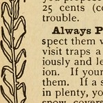 "Image from page 389 of ""The complete American and Canadian sportsman's encyclopedia of valuable instruction"" (1913)"