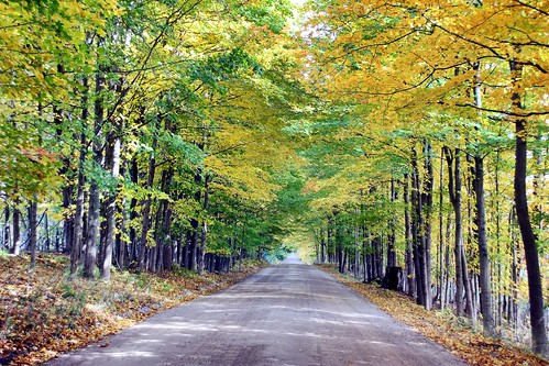 autumn puremichigan canont5i westmichigan colors shadows countryroad road dirtroad usa fall october woodlandwonders beautifulearth 2015 personalbest