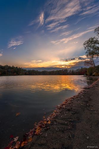 sunset sky cloud lake reflection beach leaves boston landscape pond massachusetts foliage d750 bluehills