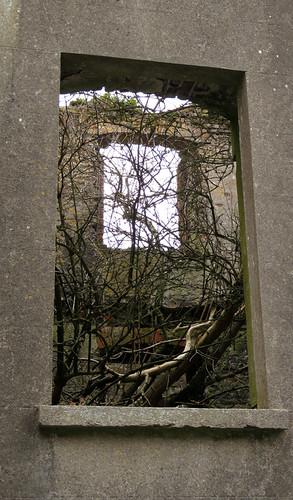 La fenêtre du Fort Charles s'ouvre sur un arbre à Kinsale, Irlande