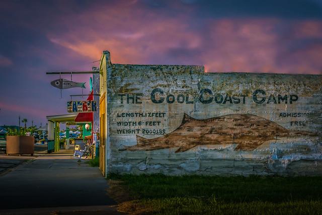 The Cool Coast Camp