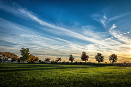 autumn trees light sunset sky sun color fall philadelphia nature field clouds landscape us nikon shadows unitedstates pennsylvania spotlight philly phiadelphia d7200