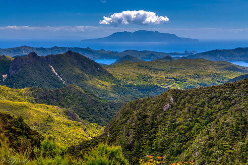 new travel newzealand mountain tourism nature trekking landscape island track great hike auckland zealand valley nz barrier wilderness hobson greatbarrierisland littlebarrierisland