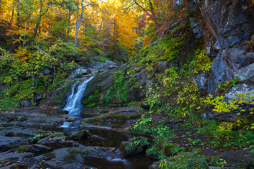autumn forest waterfall afternoon freshwater