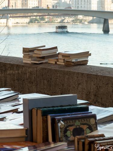 polars sur le quai | by azillia