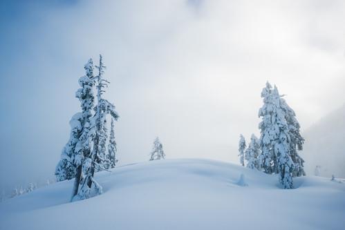 Ice Fog | by Bryn Tassell