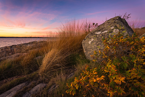 ocean autumn sunset sky orange fall water colors grass yellow rock stone canon evening coast purple sweden rosehip 6d canon6d