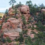 Sandstone, Zion