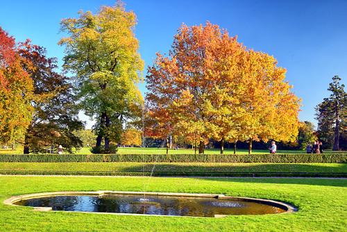 autumn trees paris france fountain grass yellow nikon europe day walk sunny arbres promenade d750 tamron fontaine f28 2470mm pelousse parcdebagatelle