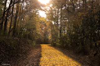 Golden Road to Imagination | by dondiartphotography @ gmail.com